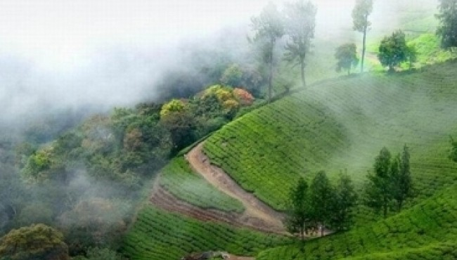 10 Fascinating Places in India You Must Visit Before Your Last Breath